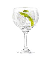 100% Breton Gin Tonic !